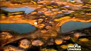 Paysages lituaniens