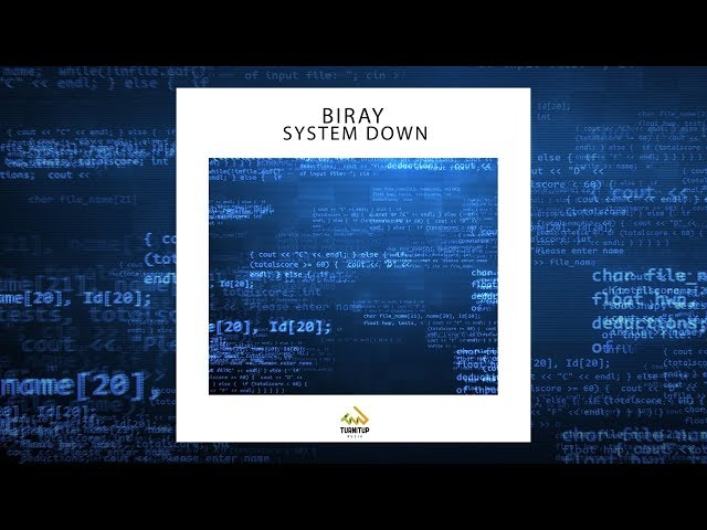 Biray - System Down