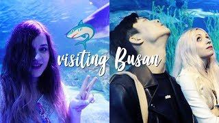 We took BUS TO BUSAN! Visiting Sea Life, Haeundae Beach & Busan at night