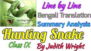 Hunting Snake by Judith Wright Bengali translation summary analysis   Class IX Poem Hunting Snake