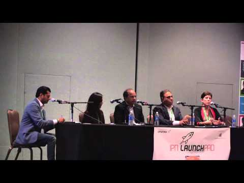 IPN LaunchPad 2014: Panel – Realizing Vision & Building Culture