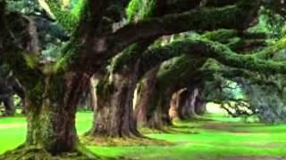 Amazing Nature Scenes Pictures [720p] [HD]