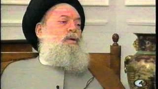 مقابلة نادرة لسماحة السيد محمد حسين فضل الله قدس سره(مع الصحفي رفيق نصرالله)قناة أبوظبي