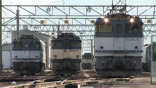 電気機関車で賑わっていたJR貨物塩尻機関区篠ノ井派出 2007年頃 HDV 1359