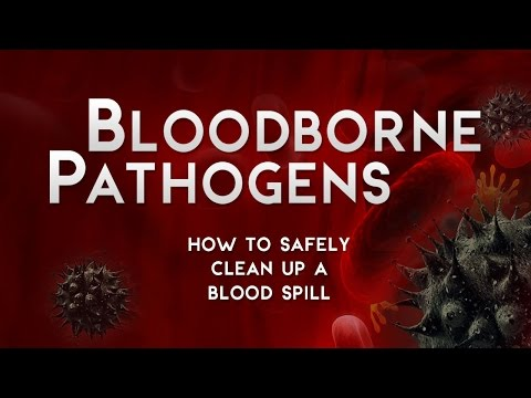 Bloodborne Pathogens: How To Safely Clean Up A Blood Spill