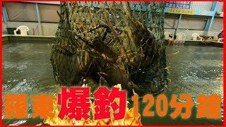 【釣場REVIEW】羅東爆釣120分鐘!! | 太平洋釣蝦場★★★★☆|2018/01/23