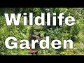 How to make a WILDLIFE GARDEN! The FOUR things you MUST INCLUDE!