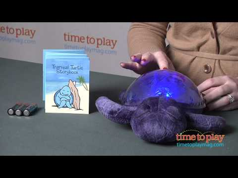 Tranquil Turtle From Cloud B
