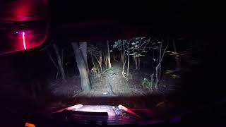 HONDA PIONEER 1000-5 GOES ON A NIGHT RIDE WITH BOOGER WHIPS GOPR1474