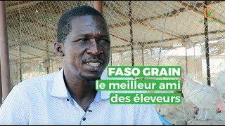 Burkina Faso : FASO GRAIN le meilleur ami des éleveurs