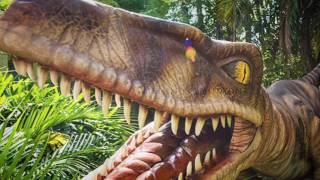 Universal Studios E isla De La Aventura