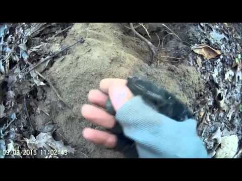 Civil War Metal Detecting in Tennessee