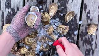 Oysters XO Step 4 of How to Shuck an Oyster (4/5)