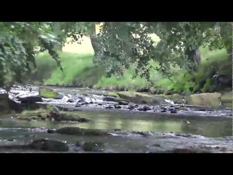 Views Of River Derwent Derbyshire