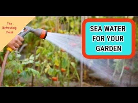 Sea Water For The Garden - Remineralizing Soil - Surprising Cancer Link -Increased Nutrients In Food