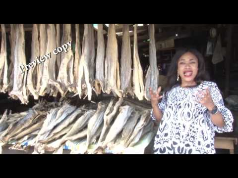 Documentary Stockfish From Norway Preview Copy