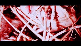 NAZARE - IDEAL(MV FULL)