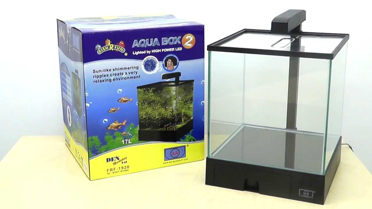 Aqua Box Aquarium Youtube
