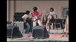 説明 79年の野外ライブ映像です。