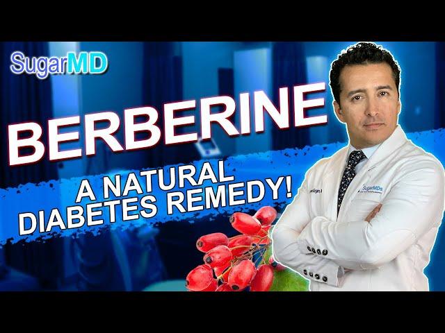 Does Berberine Really Help Control Blood Sugar? Dump Metformin?