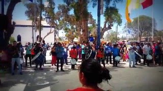 Banda Pusi Wayras Los Elegidos - Baile Tinkus Sumi Wayu / Candelaria 2016