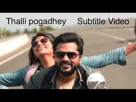 Thalli pogathey | AR Rahman | Subtitles