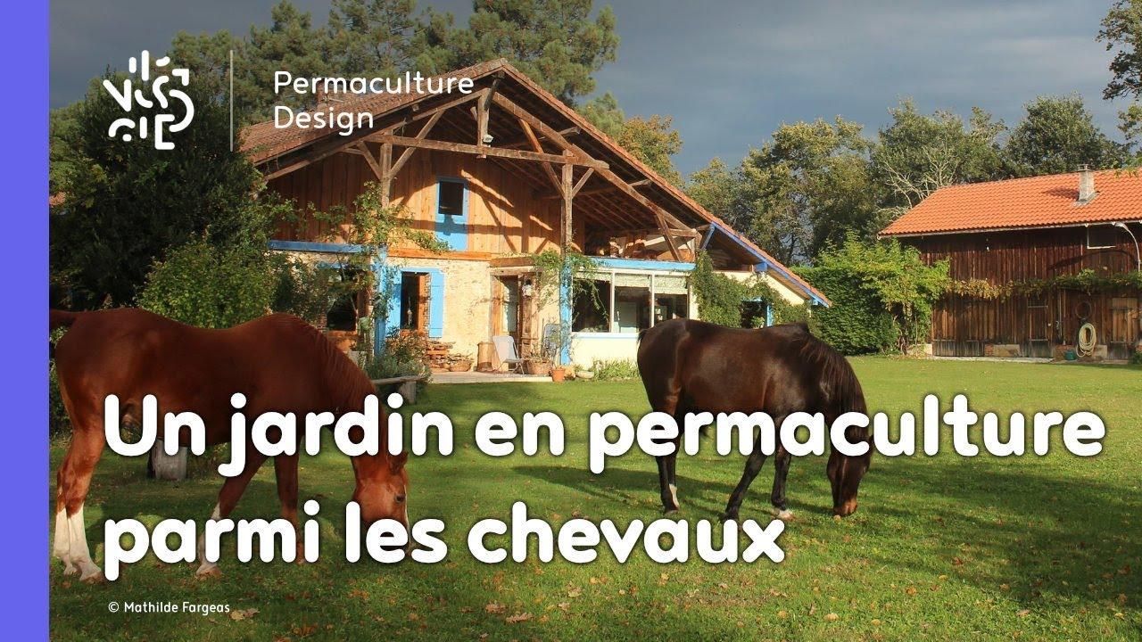 un permaculteur un jardin un jardin en permaculture parmi les chevaux - Jardin Permaculture