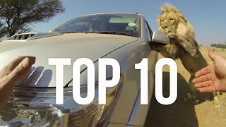 Top 10 Most Surprising Moments | The Lion Whisperer