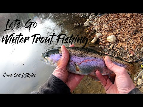 Trout Fishing In Winter On Cape Cod Ponds