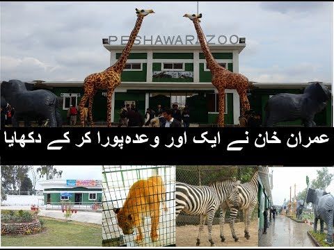Peshawar Zoo Visit, Imran Khan another promise fulfilled