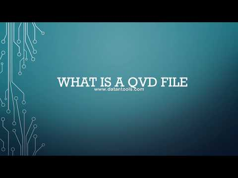 55 What is a QVD file