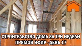 Строительство дома за 3 недели, прямой эфир. День 17-ый.