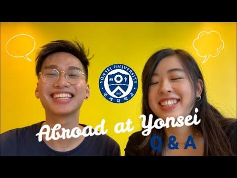 Yonsei University Exchange Q&A L Student Life & Top Tips!