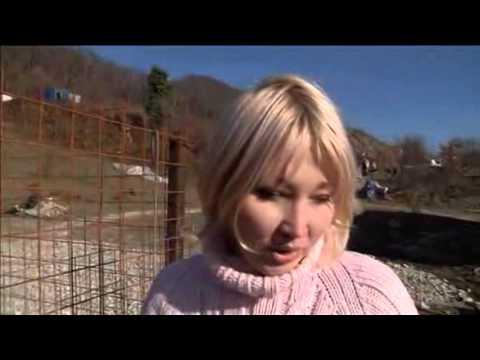 Sochi Built Shelter Instead of Killing Stray Dogs
