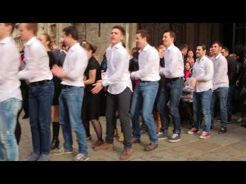 Flashmob  Marry You  Heiratsantrag Stephansplatz Wien