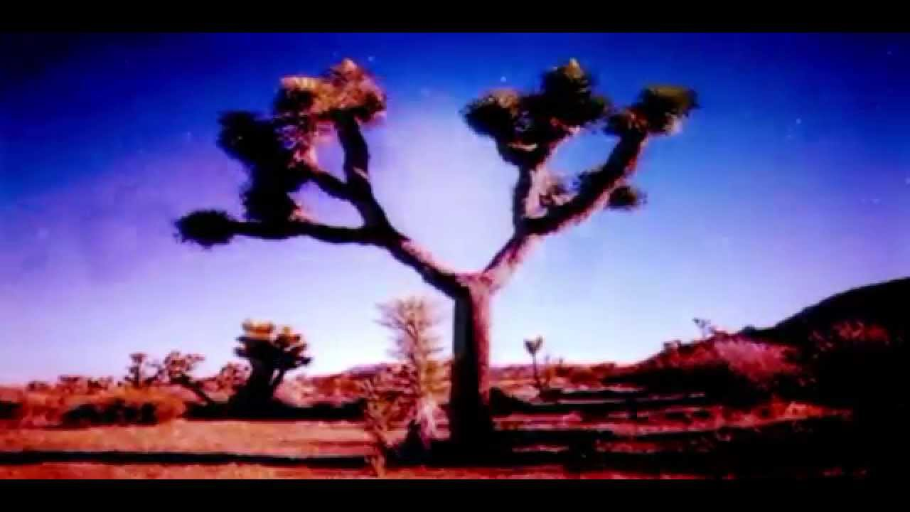 moby-almost-home-with-damien-jurado-sebastien-remix-moby