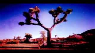 Moby - Almost Home (with Damien Jurado) (Sebastien Remix)