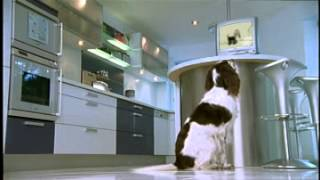 Wagg Pet Foods - Tv Advert