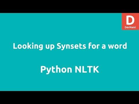 Lookup Synset wordnet Python NLTK