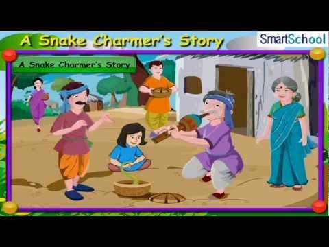 EVS: A Snake Charmer's Story