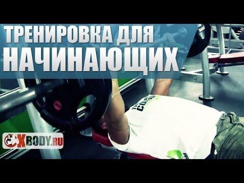 Тренировка в тренажерном зале для начинающих