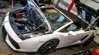 What's Stopping My Cheap Lamborghini From Making 1,000+ HP On the Dyno?! (QUICK UPDATE)