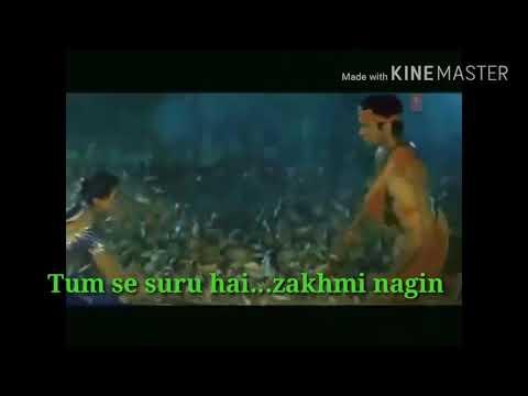 Tum se suru hai zakhmi nagin hindi songs best lover review