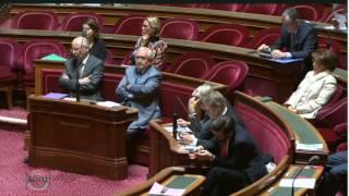 La France et l'Europe face à la crise au Levant - séance au Sénat