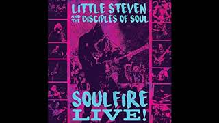 LITTLE STEVEN & THE DISCIPLES OF SOUL - Groovin' Is Easy (live audio 2017)