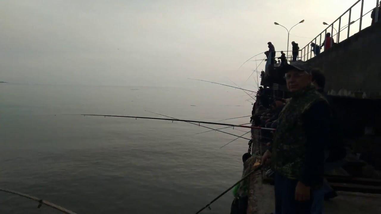 Ловля кефали(чуларки), Абхазия (Гагра)