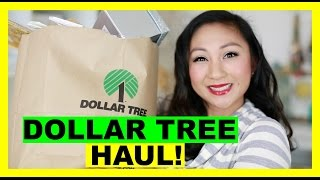 DOLLAR TREE HAUL! #8
