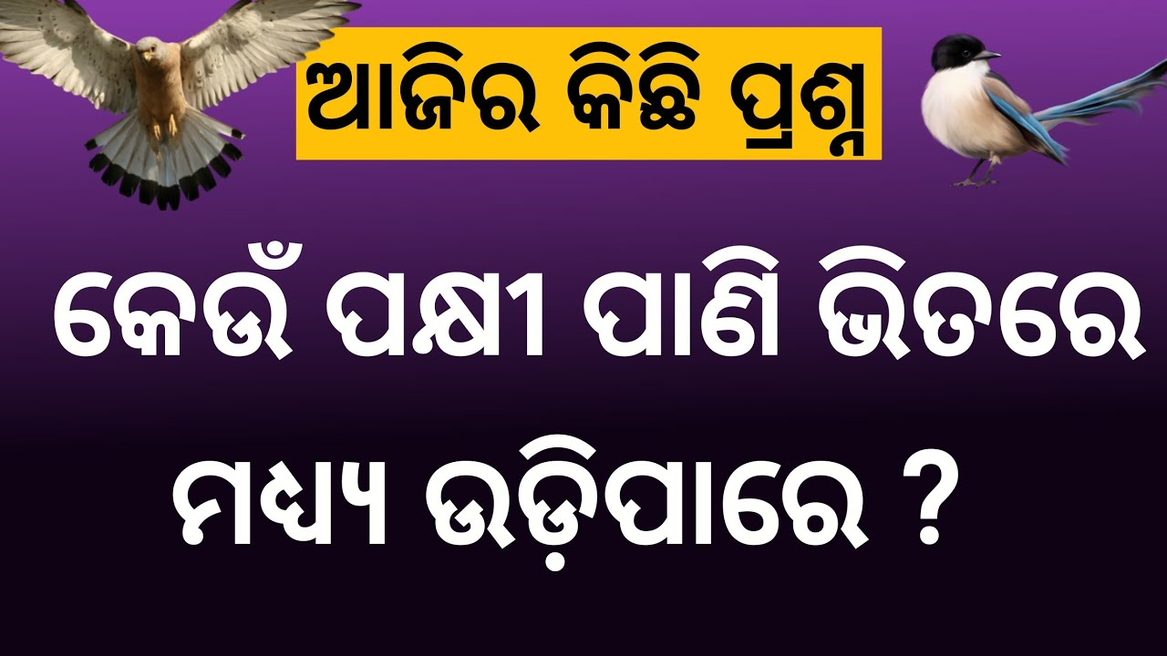 odia general knowledge question answer || odia riddles and paheliyan || ias interview question