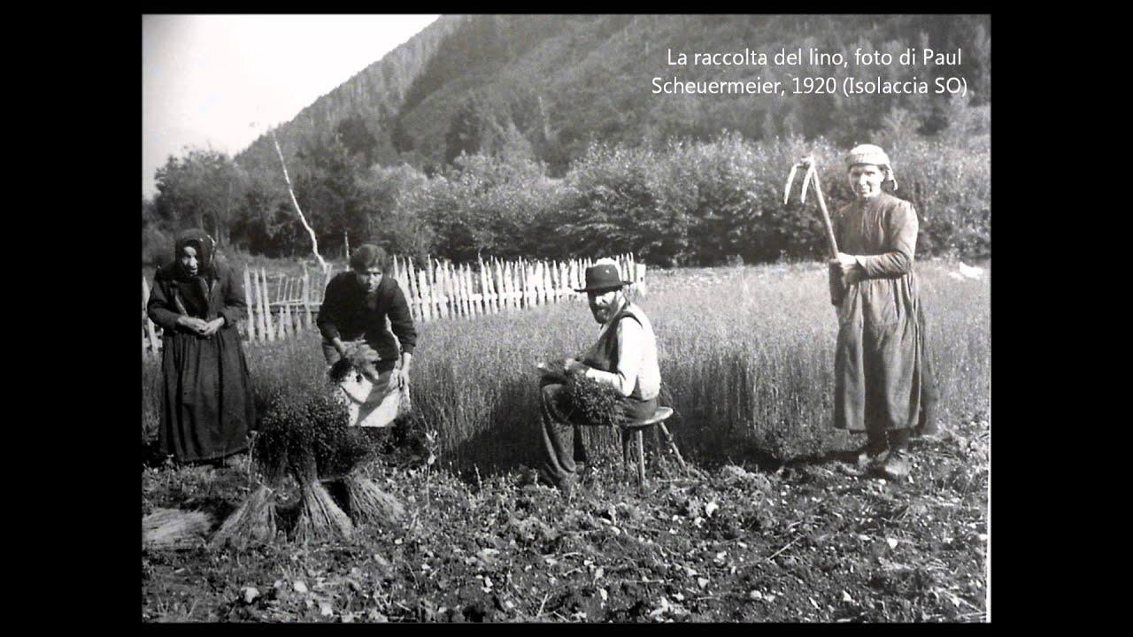 Coltivazione e lavorazione della canapa