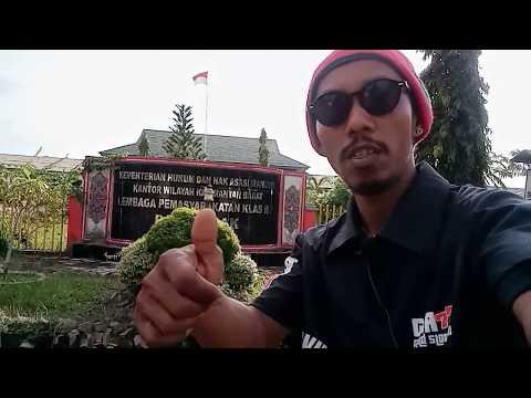 lapas-kelas-iia-pontianak---gta777-game-pulsa-indonesia